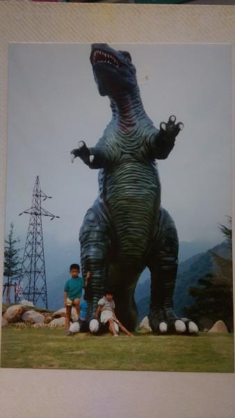 IMAG1995
